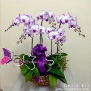 Hoa tặng mẹ ngày lễ vu lan
