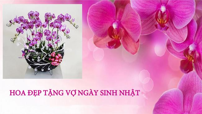 hoa tang vo ngay sinh nhat