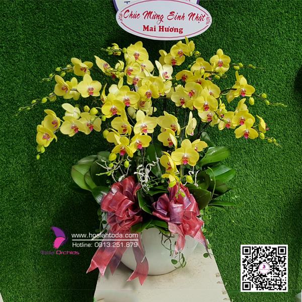 hoa tang sinh nhat ban than