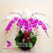 Giỏ Hoa Đẹp Tặng Mẹ Ngày Sinh Nhật Ý Nghĩa